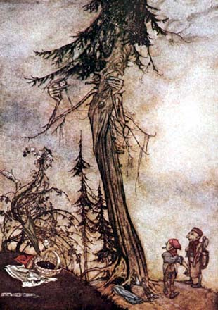 The Fir-Tree and the Bramble, by Arthur Rackham
